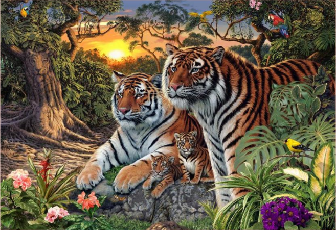 Сколько тигров на картинке